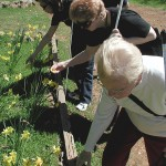 Seniors from community gardening Society for the Blind